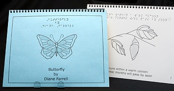Braille Children's Book Butterfly