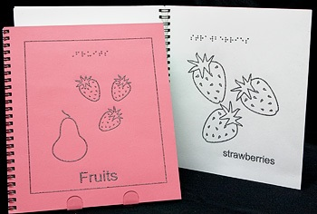 Braille Children's Book Fruits