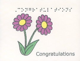 Braille and Tactile Greeting Card Box of Small Blank Congratulations – Daisies