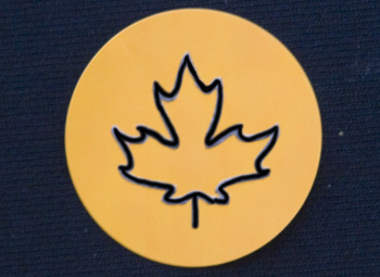 Fun Braille Activities Maple Leaf Stickers